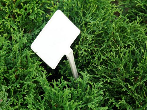 Памятки, бирки, ярлычки, таблички, маркеры для огорода